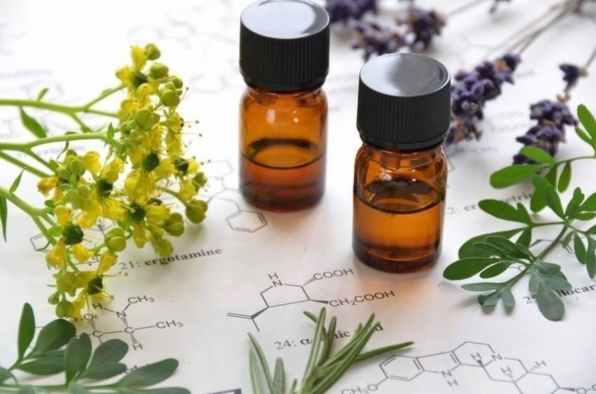 Los diferentes enfoques de la Aromaterapia