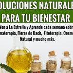 SOLUCIONES NATURALES PARA REFORZAR EL SISTEMA INMUNITARIO